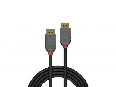 DisplayPort 1.1 kabelis 15m 1920x1200 60Hz, Anthra Line 2