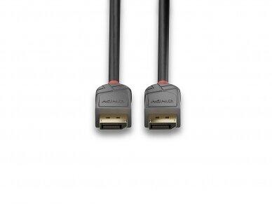 DisplayPort 1.1 kabelis 15m 1920x1200 60Hz, Anthra Line 4