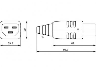 Maitinimo lizdas C21 16A 3