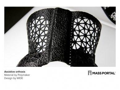 MASS PORTAL 3D spausdintuvas D400 su medžiagų džiovintuvu 7
