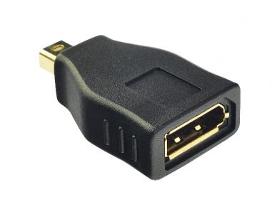 Mini-DisplayPort M į DisplayPort F perėjimas 2