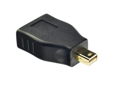 Mini-DisplayPort M į DisplayPort F perėjimas