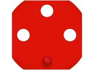 Rozetės raktas, raudonas Polo