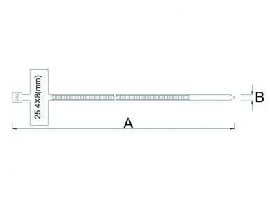 Tvirtinimo dirželiai 100x2.5mm (1000vnt)